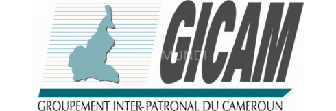 Groupement interpatronal du Cameroun (GICAM)
