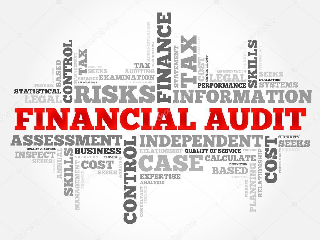 Réaliser Une Mission d'Audit Financier - Examiner des états financiers de l'entreprise, visant à vérifier leur sincérité, leur exactitude et leur pertinence