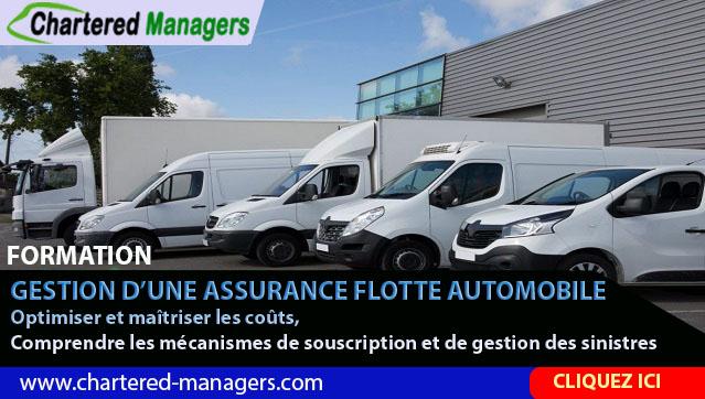 Gestion d'une Assurance Flotte Automobile - Optimiser et maîtriser les coûts de l'assurance flotte automobile. Comprendre les mécanismes de souscription et de gestion des sinistres d'une flotte automobile.