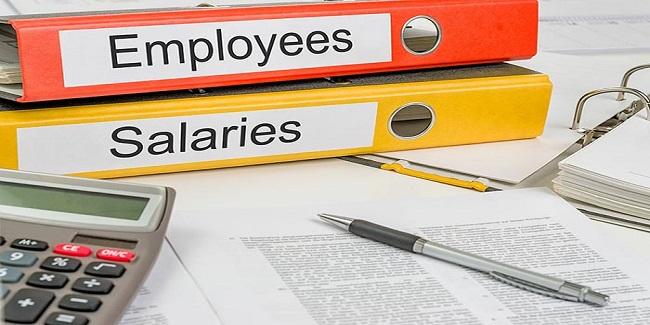 Traitement de la Paie et Gestion Administrative du Personnel - Maitriser tous les aspects du traitement de la paie, les techniques d'optimisation des charges patronales  et régime juridique de la protection des salaires
