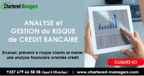 Analyse et Gestion du Risque de Crédit - Evaluer et prévenir les Risques Clients grâce au Diagnostic Financier Spécifiquement Orientée Crédit