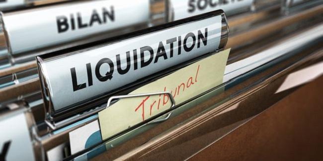Pratique et Contentieux du Cautionnement Comme Garantie des Engagements Commerciaux, et du Crédit