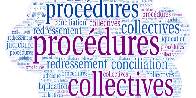 Maitriser les procédures collectives et leurs incidences pratiques sur le statut et le droit des créanciers  -