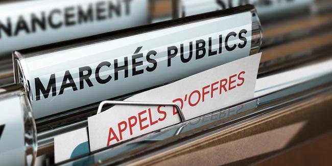 Pratique et Contentieux des Contrats Publics d'Affaires - Régime juridique, Marchés Publics, Délégations de Service Public, Partenariats public-privé, Immunités d'exécution...