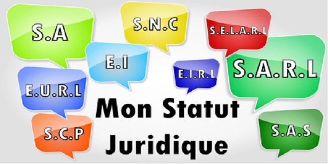 Ingénierie Juridique des Sociétés Commerciales -