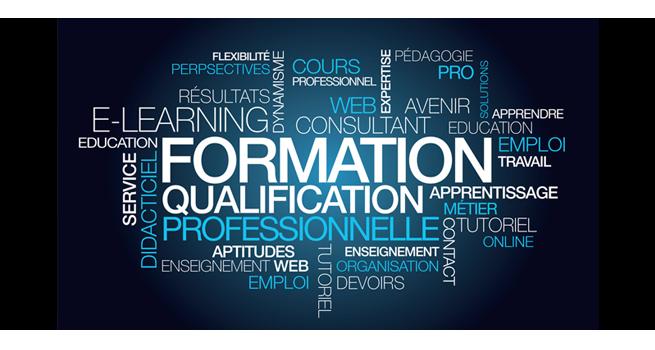 Ingénierie de la formation & Gestion de la Formation Continue - De l'analyse des besoins à l'élaboration au pilotage d'un plan de formation et ses implications
