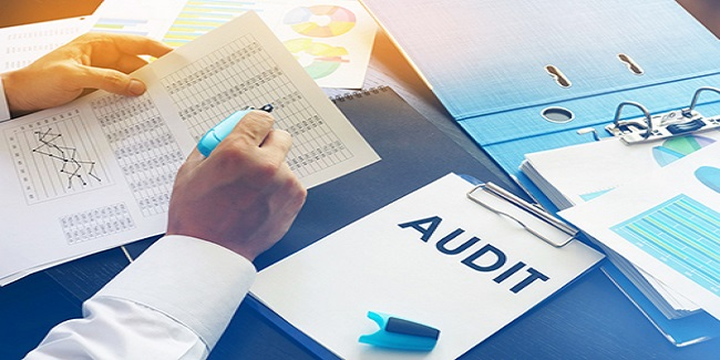 Pratique de l'Audit Fiscal et Maitrise du Risque Fiscal - Savoir  Analyser Point Par Point, la Situation Fiscale d´ une entreprise , évaluer les risques liés aux contrôles fiscaux et corriger les erreurs décelées et ainsi éviter tout redressement fiscal