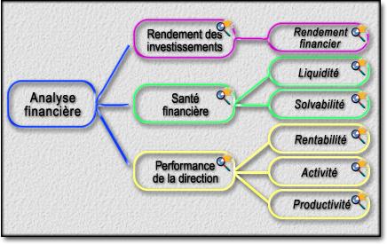Maitriser Pratique de l' Analyse Financiere -